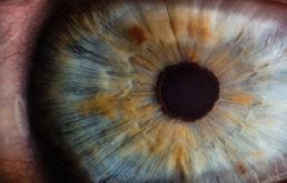 Studio Lucchini - esame del fondo dell'occhio