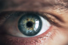 Studio Lucchini - l'occhio e il corpo vitreo